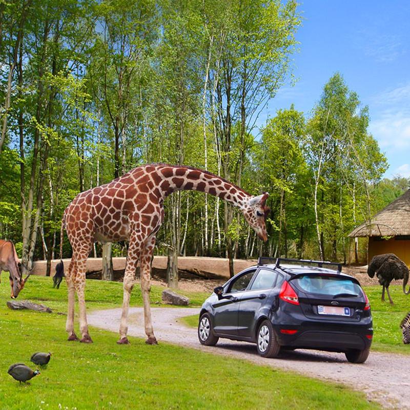 Zoo Le monde sauvage van Aywaille