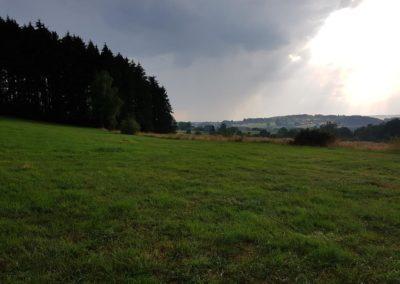 ardense-landschap