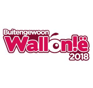 Ongewone accommodaties in Wallonië belgische Ardennen