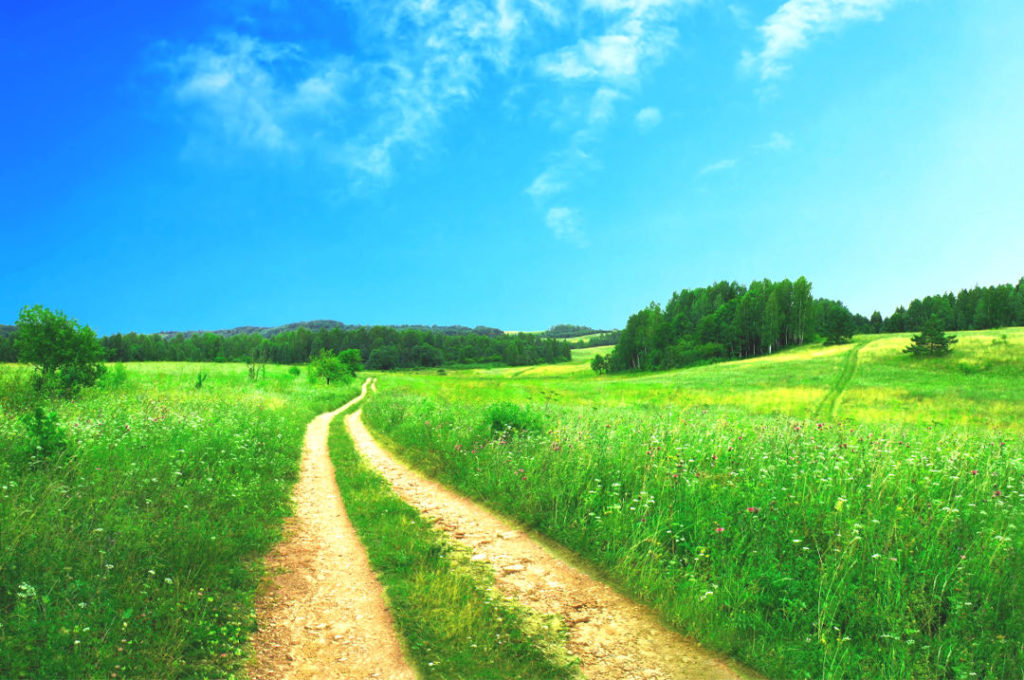 Sentier de randonnée dans les Ardennes belges