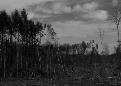concours-photo-camping-le-val-de-l-aisne-dans-les-ardennes-belges (104)