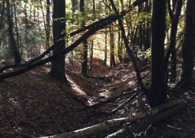 concours-photo-camping-le-val-de-l-aisne-dans-les-ardennes-belges (114)