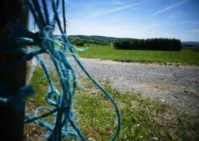 concours-photo-camping-le-val-de-l-aisne-dans-les-ardennes-belges (26)