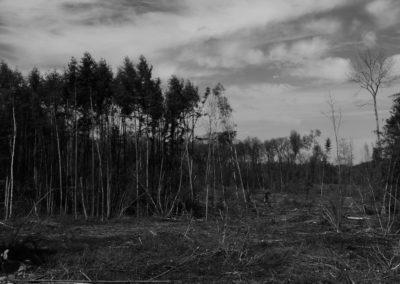 concours-photo-camping-le-val-de-l-aisne-dans-les-ardennes-belges (42)