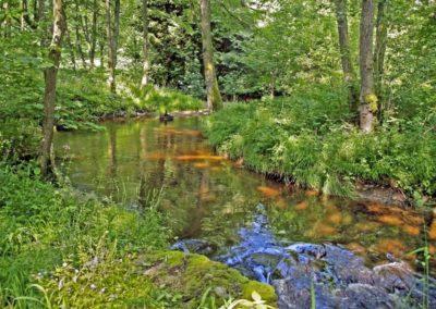 camping-au-bord-de-la-riviere